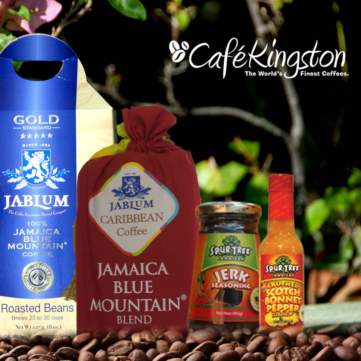 become a member of the Jamaica Coffee Club and get authentic jamaican blue mountain coffee every month. Delivered to your door!
